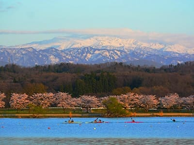 Lake Kiba Park